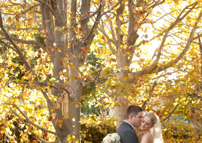 wedding tree romantics