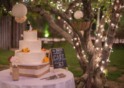 Rustic outdoor Illuminate cake